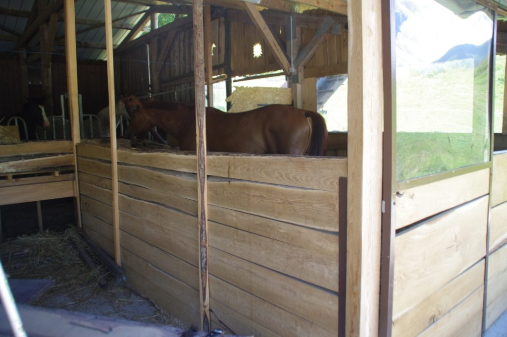 box cheval coté